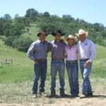 Yolo Land & Cattle Company Carbon Cowboys Healing the Earth